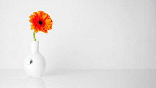 5 consigli per diventare più minimalista