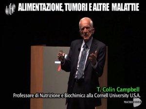 """The China Study """"spiegato"""" da Le Iene: Colin Campbell punta il dito su caseina e latte"""