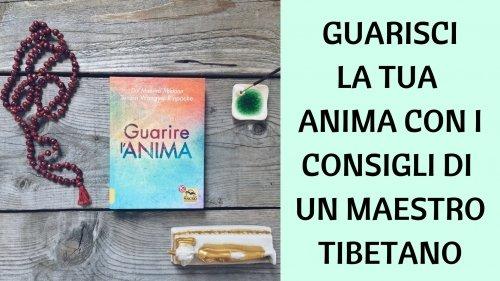 Guarisci la tua anima con i consigli di un Maestro tibetano
