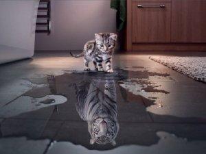 Autostima: come aumentarla senza diventare presuntuosi