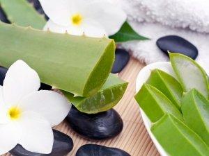 Aloe Vera: 10 utilizzi fai da te per la bellezza