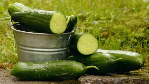 Cetriolo: 10 buoni motivi per mangiarlo