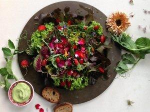 Come usare i fiori commestibili in cucina