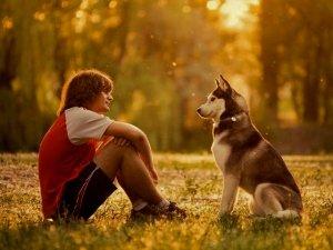 Che cosa mi vuoi dire? Lezioni di comunicazione animale