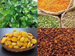 Dieta vegetariana: dove si trova il ferro?