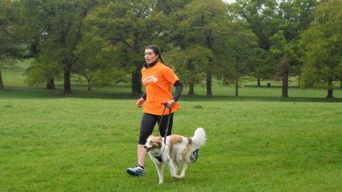 Dog Fitness: l'attività fisica con il tuo cane è la miglior ginnastica