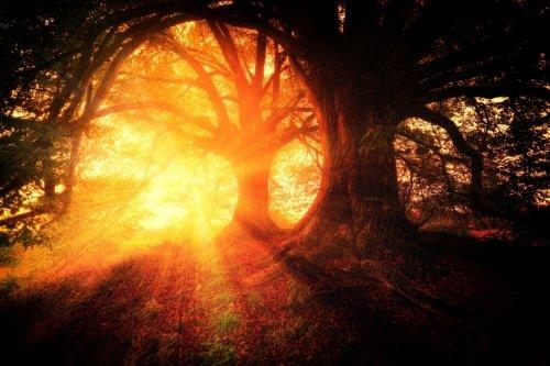 La doula della morte: il sostegno negli ultimi giorni della vita