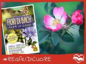 #REGALIDICUORE per guarire secondo natura coi Fiori di Bach