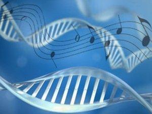 La grammatica del DNA