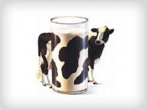 Latte si, latte no: 4 scelte per non allevare bambini come vitelli