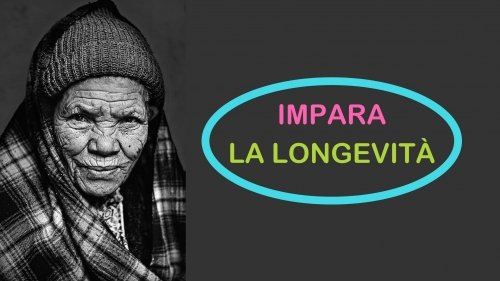 L'arte della longevità: la dieta, i consigli, cosa fare ogni giorno per vivere più a lungo