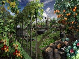 Permacultura: evita di produrre rifiuti