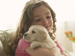 Pet Therapy: il segreto del successo