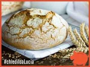 Risparmia sulla spesa con il pane fatto in casa