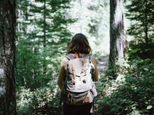 Shinrin-Yoku: il bagno nella foresta. Cos'è e come funziona
