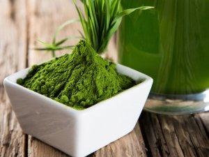 SuperFood: Alga clorella e spirulina, proprietà e benefici di uno straordinario supercibo
