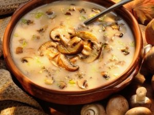 Zuppa di funghi porcini con miglio senza glutine e latte animale