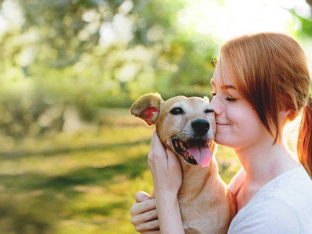 9 consigli per scegliere l'animale con cui vivere