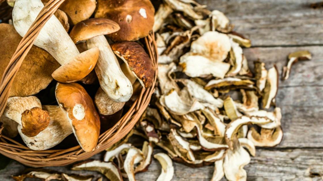 Funghi, bontà e benessere