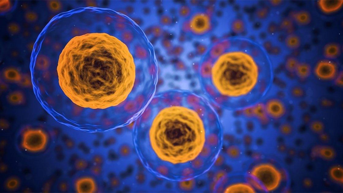La medicina che sussurra alle cellule: scopriamo la low dose medicine