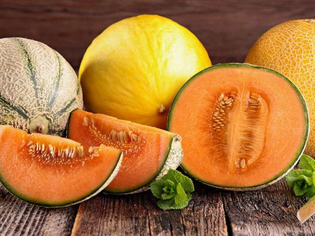 Melone: proprietà, ricette e benefici