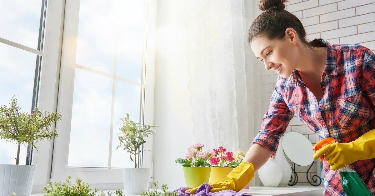 Microrganismi effettivi per le pulizie di casa - Pulizie di casa ...