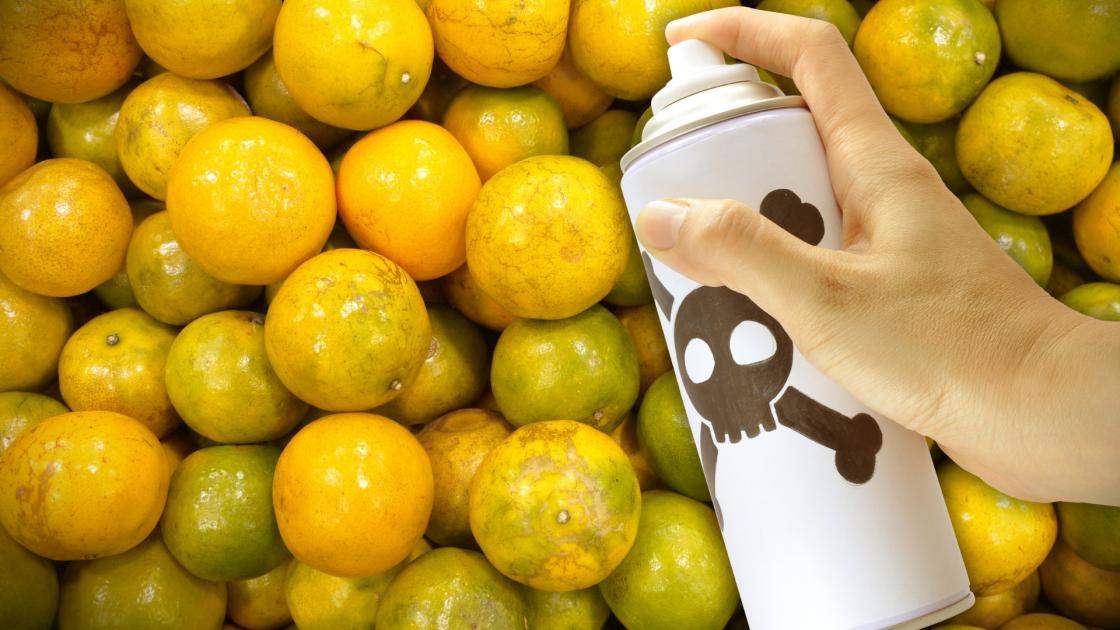Pesticidi nel piatto: la situazione in Italia