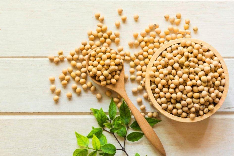 Soia, benefico e versatile legume