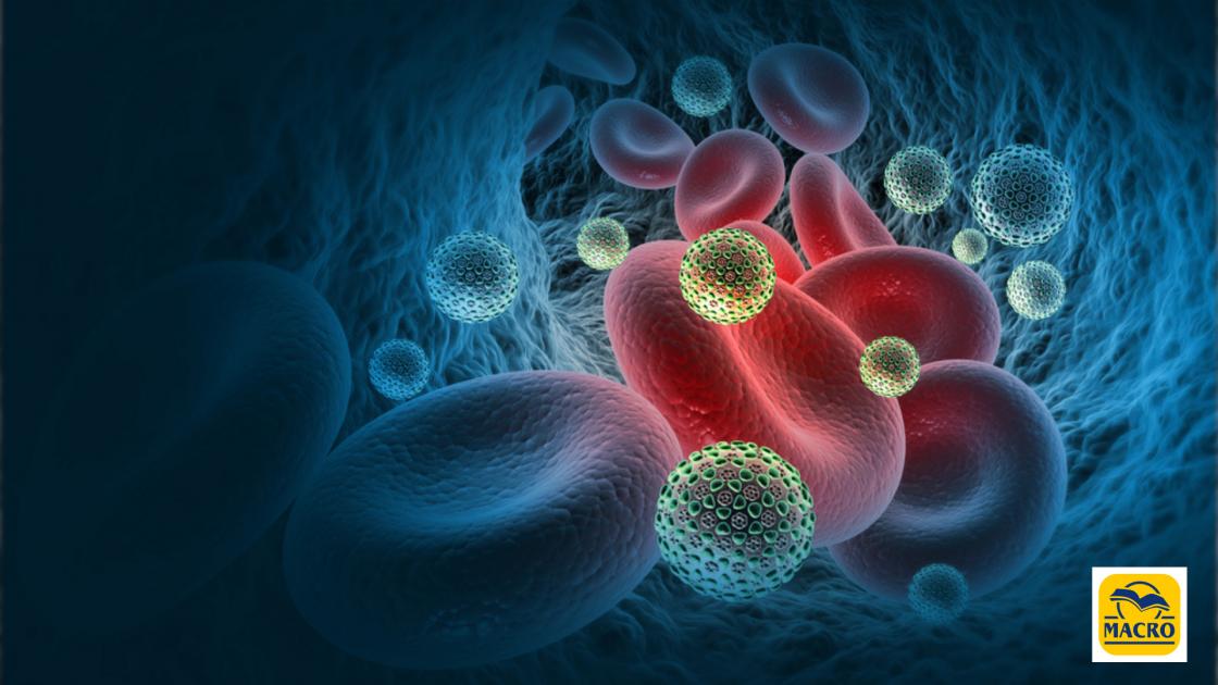 Il senso della profilassi immunitaria dell'umanità