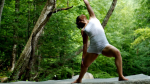 Yoga nel bosco: scopri i benefici di meditare nel bosco