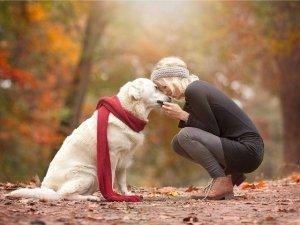 L'accompagnamento empatico: con il cane fino alla fine
