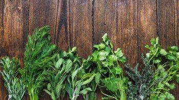 Curarsi con le erbe: le piante medicinali contro infiammazioni e virus