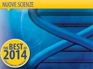 Nuove Scienze: alla scoperta dell'invisibile con Lipton, Braden, Marchi, Teodorani