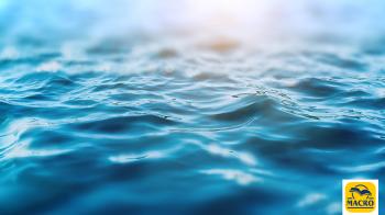 I vantaggi di stare vicino all'acqua con Wallace J. Nichols