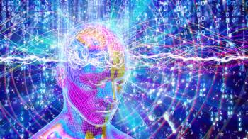 Il cervello umano e la fisica quantica