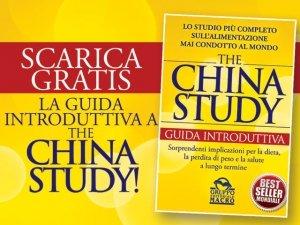 Scarica la guida introduttiva a The China Study