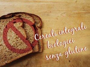 Cereali biologici in chicchi senza glutine: perché preferirli e come cuocerli