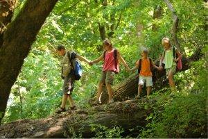 Insegniamo ai bambini a rispettare la natura