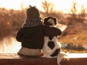 Pet Therapy per l'iperattività dei bambini
