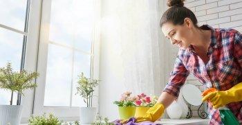 Microrganismi effettivi per le pulizie di casa