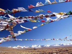 Padma: scopri il potere terapeutico di questo antico rimedio naturale tibetano