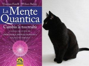 Vincenzo Fanelli: il paradosso del gatto di Schrödinger