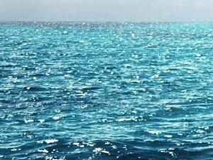 Plasma di Quinton: l'acqua di mare come cura