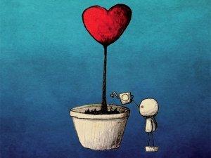 VIVI OGGI IL FUTURO CHE SOGNI. Il nuovo manuale pratico di Tiberio Faraci: Corso per amare te stesso.