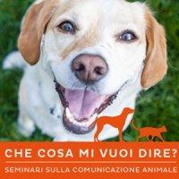 Seminari comunicazione animale
