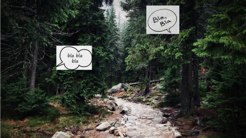 Gli alberi parlano tra loro