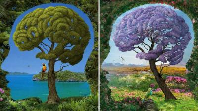 Gli alberi hanno un cervello