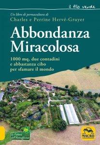 Abbondanza Miracolosa - Ebook