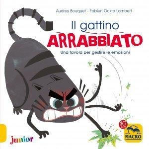 Il Gattino Arrabbiato - Libro
