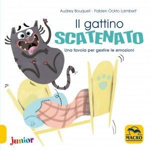 Il Gattino Scatenato - Libro